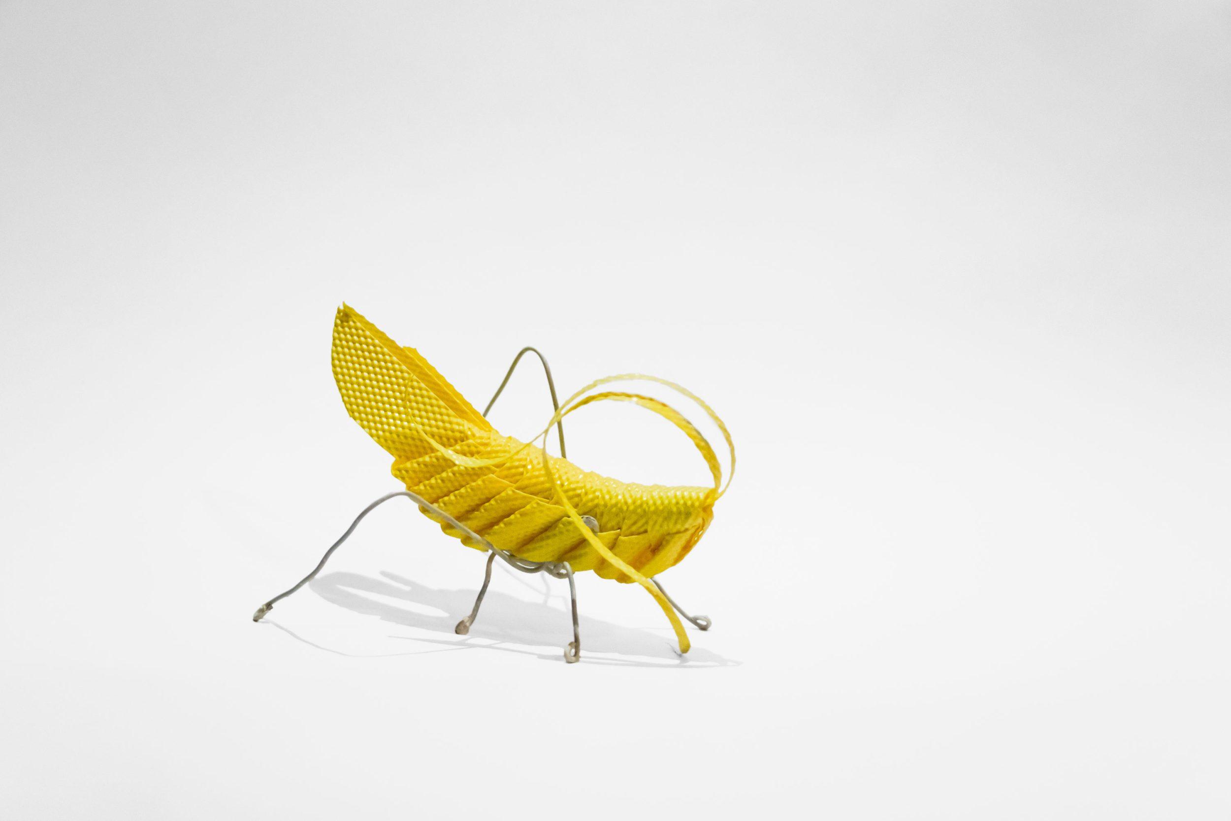 Grasshopper-web