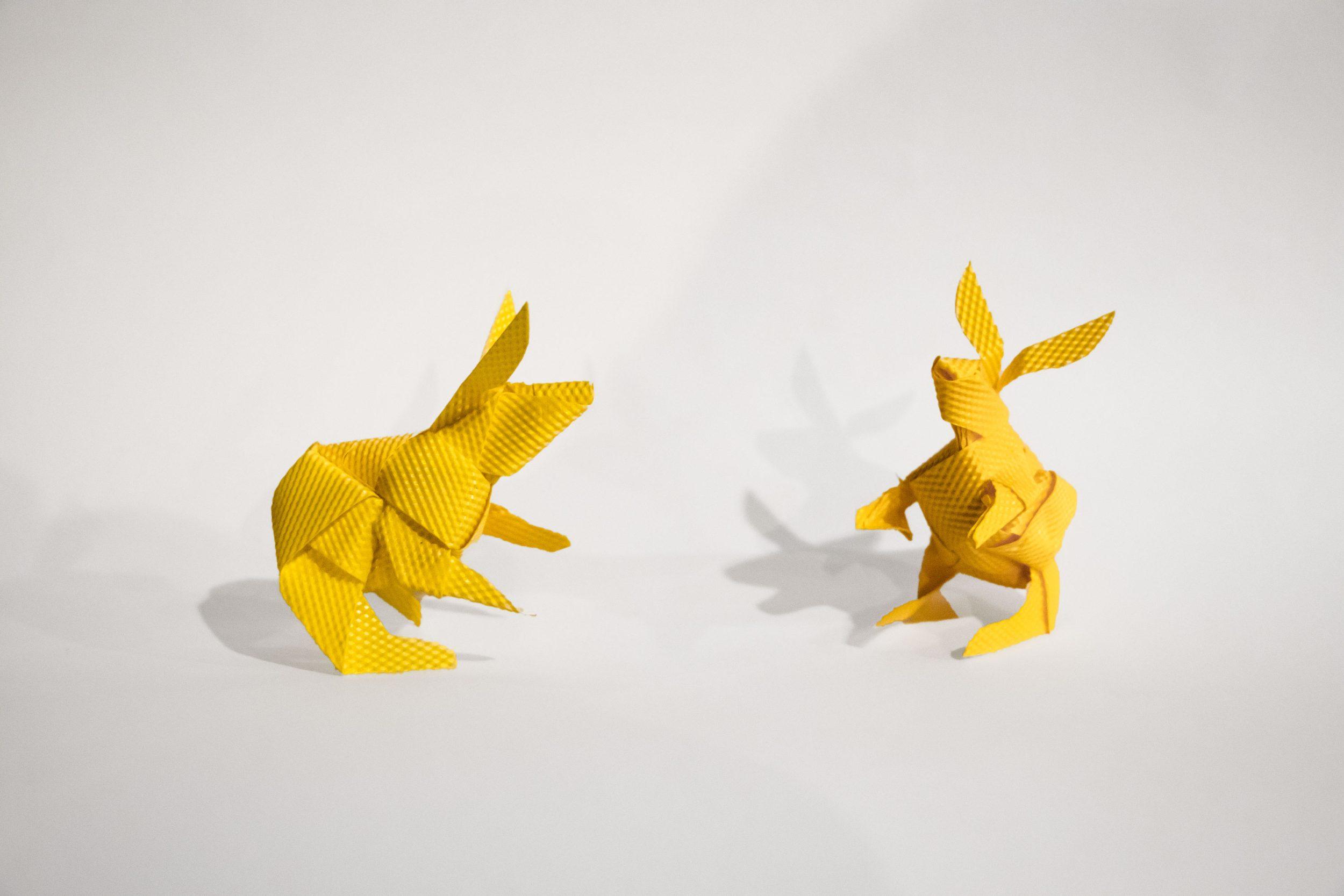 Rabbits-web